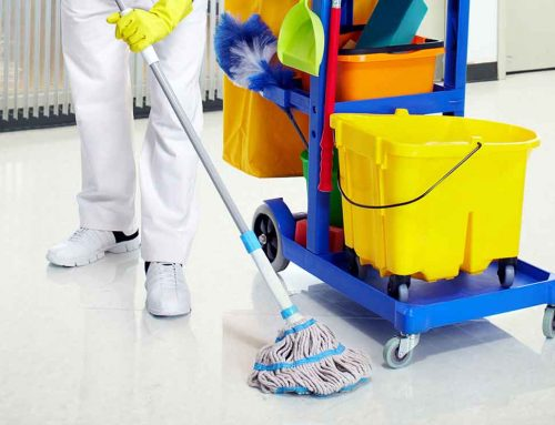 شركة تنظيف في دبا الفجيرة |0523353369|عود الماسة