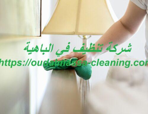 شركة تنظيف في الباهية |0523353369| تنظيف بيوت