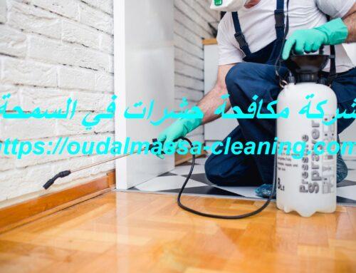 شركة مكافحة حشرات في السمحة ابوظبي |0523353369